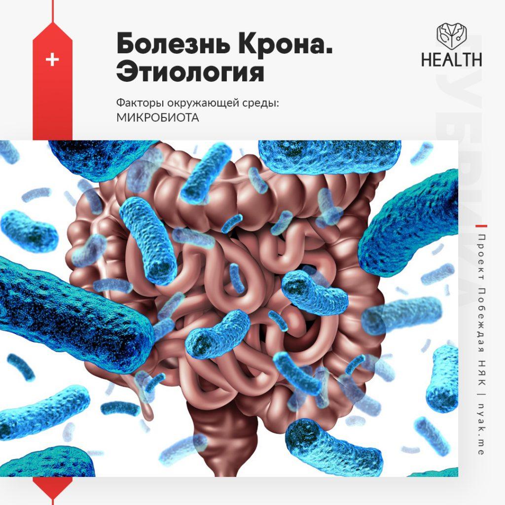 Этиология болезни Крона. Факторы окружающей среды. Микробиота