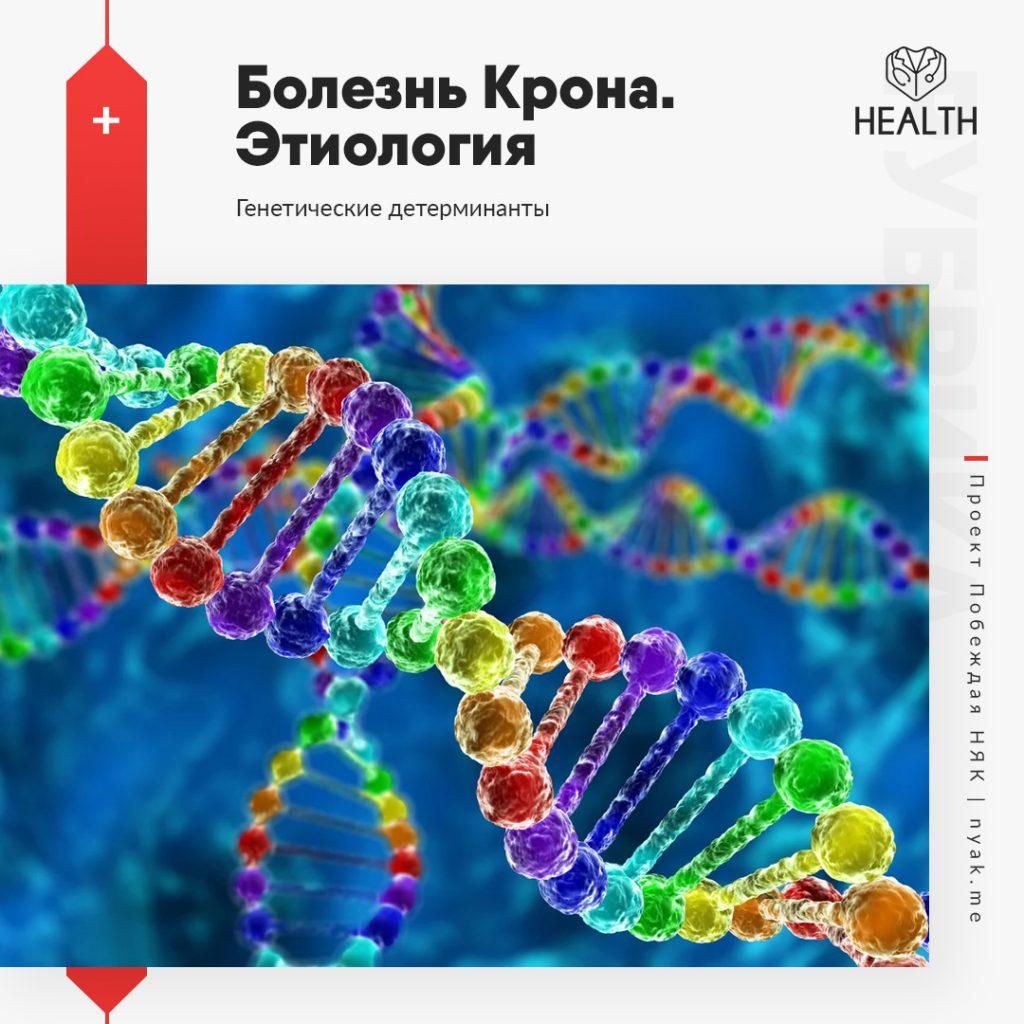 Этиология болезни Крона. Генетические детерминанты