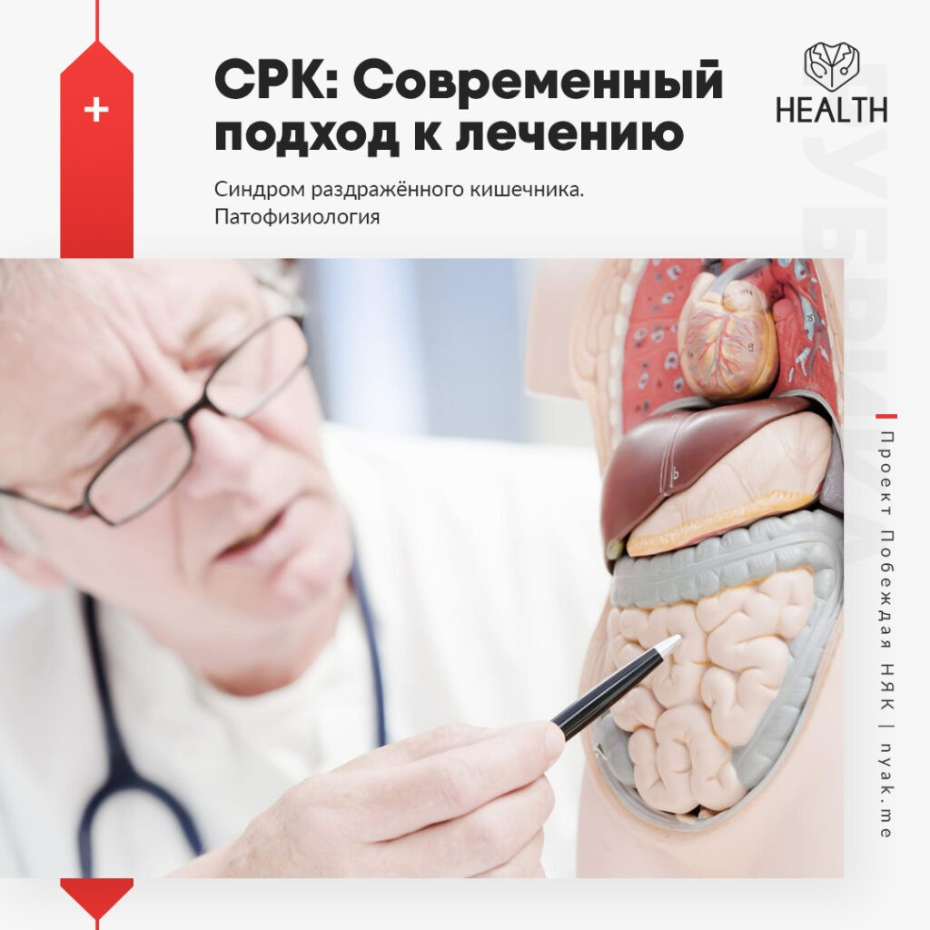 Патофизиология СРК. Причины возникновения синдрома раздражённого кишечника