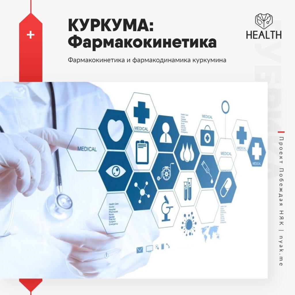 Фармакокинетика и фармакодинамика куркумина