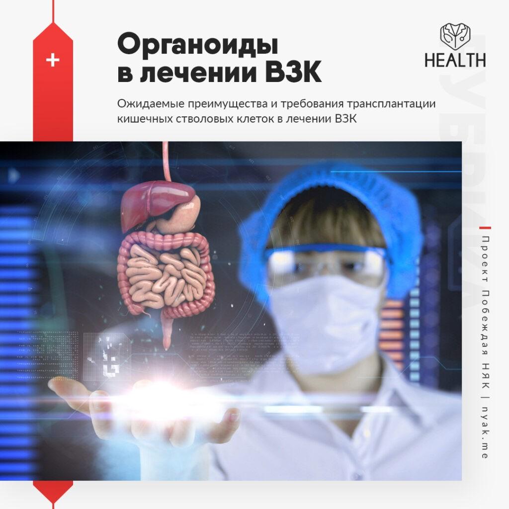 Органоиды в лечении ВЗК. Ожидаемые преимущества и требования трансплантации кишечных стволовых клеток при воспалительных заболеваниях кишечника