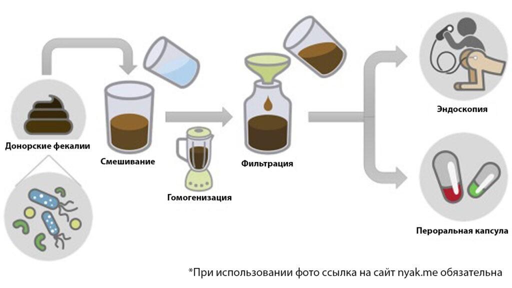 Принципиальная схема процесса трансплантации фекальной микробиоты
