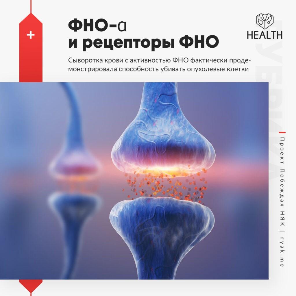 Сыворотка крови с активностью ФНО фактически продемонстрировала способность убивать опухолевые клетки in vitro и in vivo