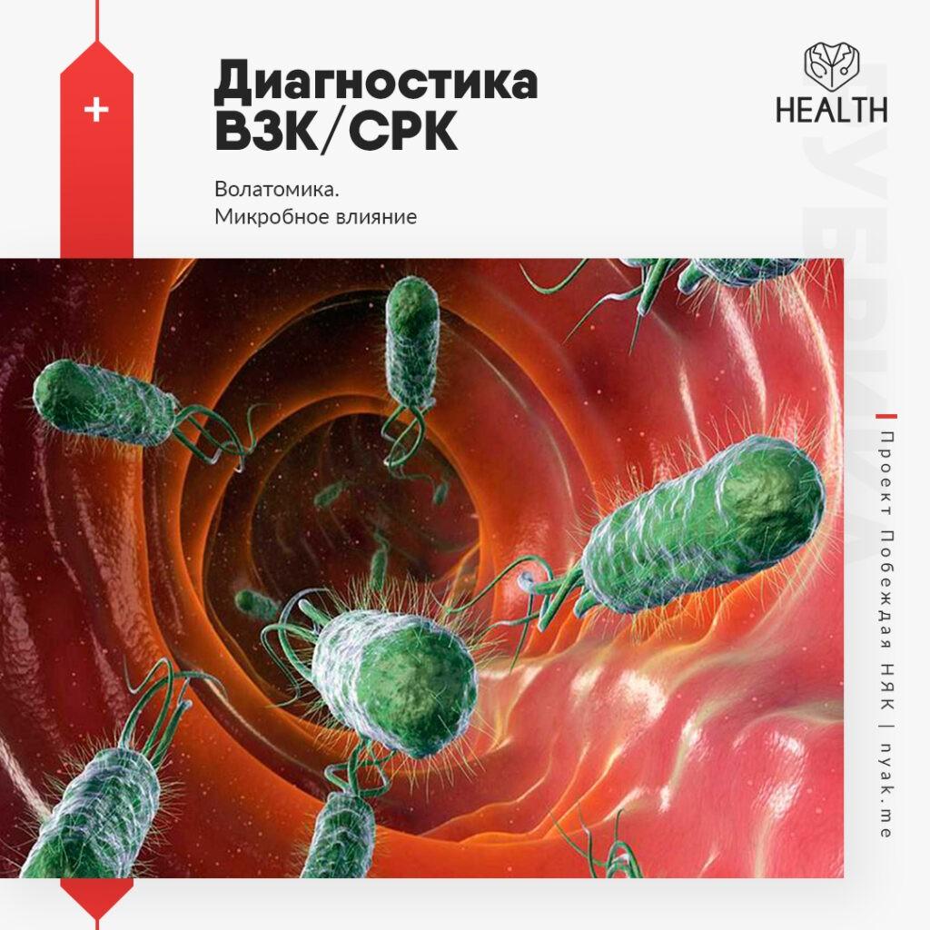 Волатомика при ВЗК и СРК. Микробное влияние